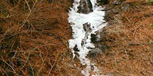 本日の三頭大滝です。