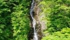 春:三頭大滝